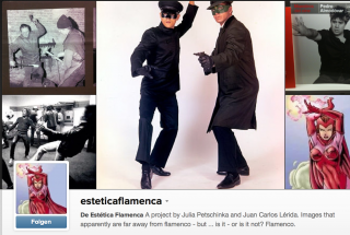 Screenshot des Instagram-Accounts von @esteticaflamenca 2014