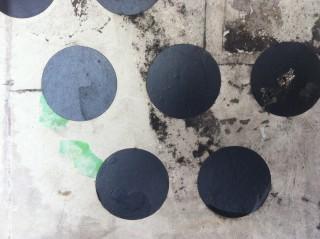 gefunden: schwarze Tupfen